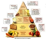 paleo-food-matrix