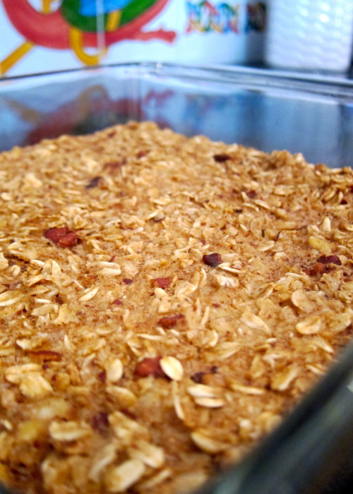 protein oat bars - fitting it all in