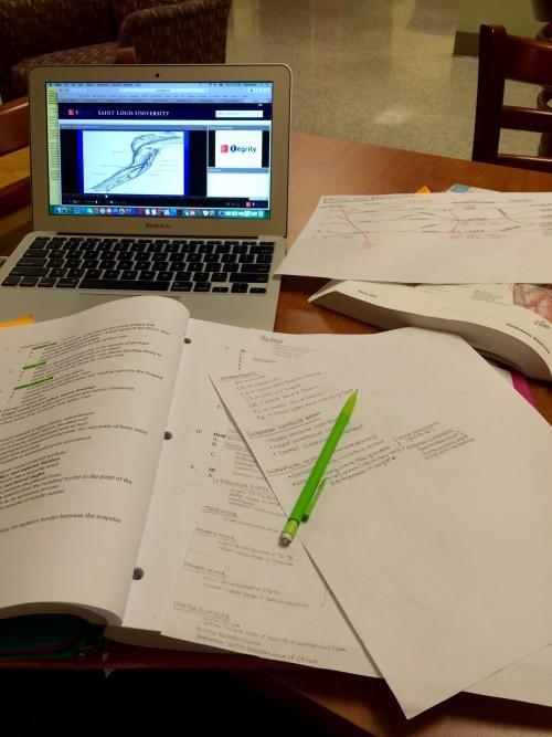 Anatomy Studying