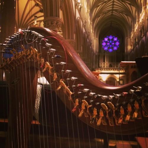 Clare - Harp - SLU Anatomy Ceremony