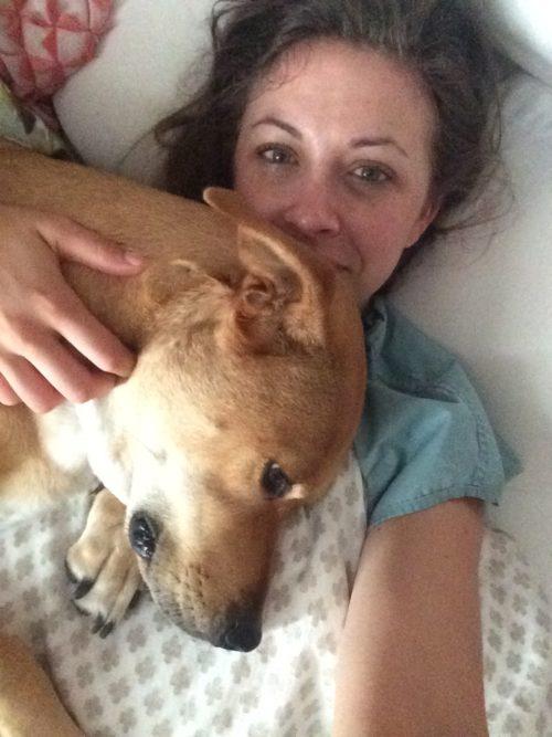 Gus Puppy Cuddles