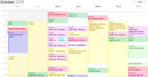 Busy Day Calendar